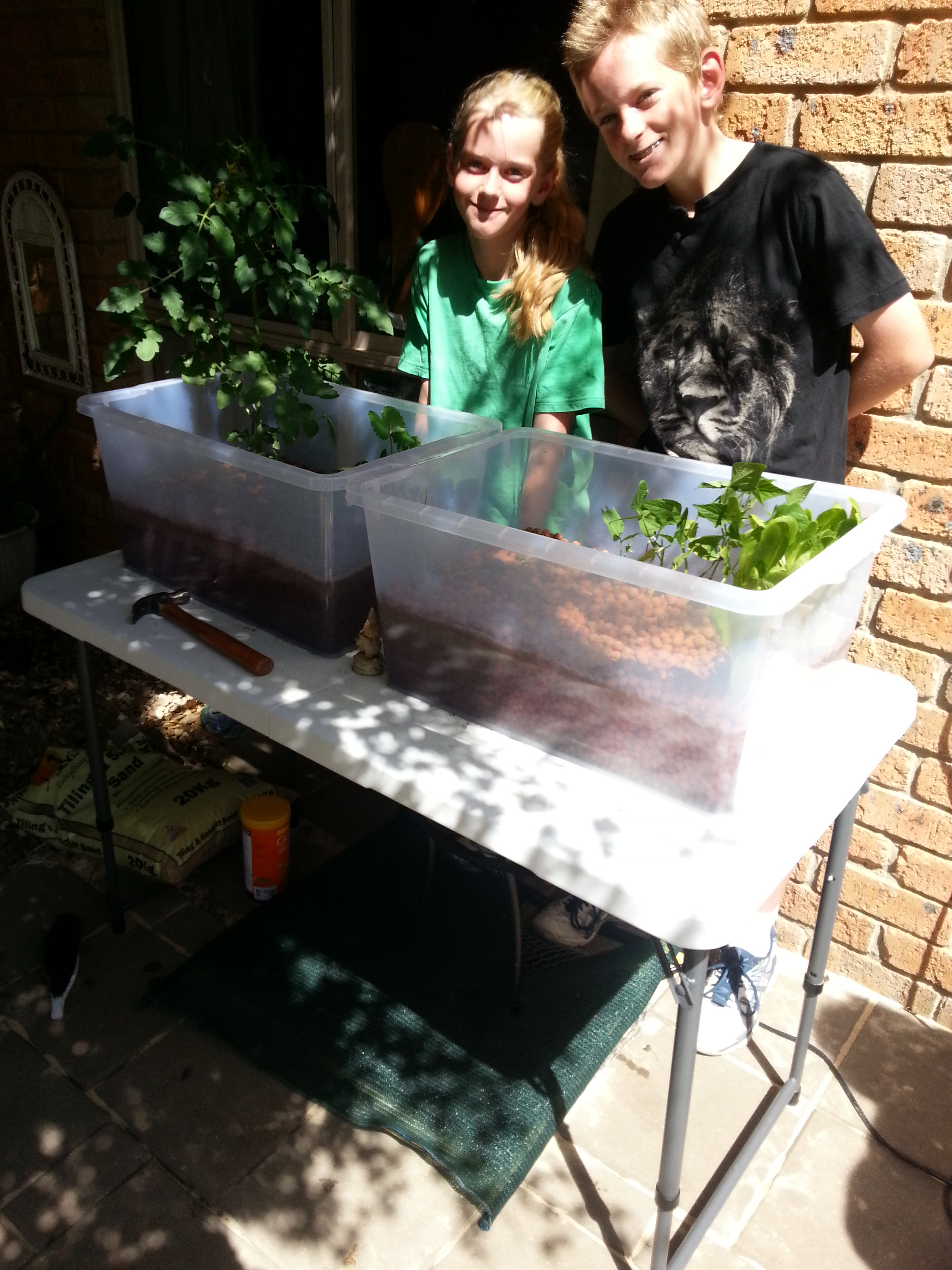 Introducing the French Double Tub Aquaponics System